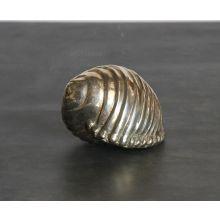 Shell Sleret